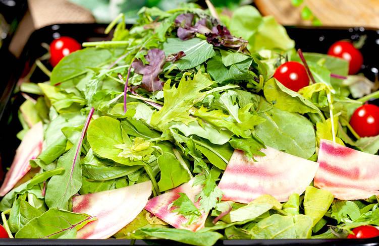 【ロハス&ヘルシー】横浜都筑野菜中心!ネオダイニングの立食スタンダードオードブルプラン画像0